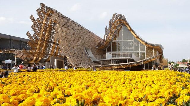 Der chinesische Pavillon hat ein geschwungenes Dach. Vor dem Pavillon ist ein gelbes Blumenfeld.