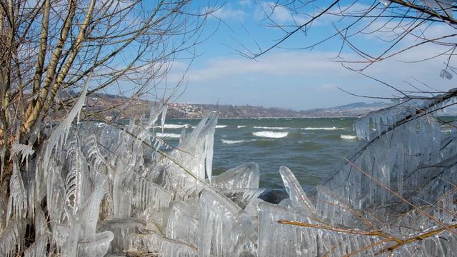Natürlich geschaffene Eisskulpturen bei Avenches am Ufer des Murtensees.