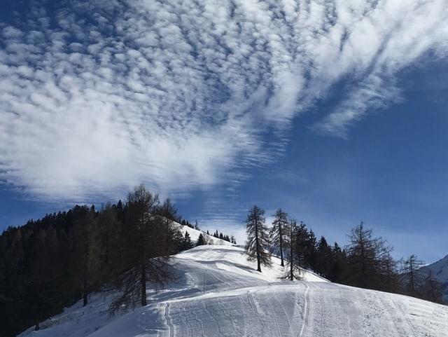 Oberhalb vom Thunersee, in Aeschiried, zeigt sich der Winter von seiner schönsten Seite.