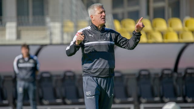 Vladimir Petkovic hat mehrere Optionen.