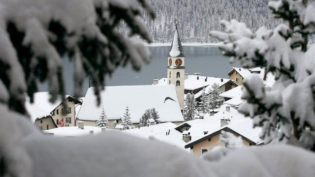 Blick zwischen zwei Tannen durch über die verschneiten Dächer, den Kirchturm und den See von Silvaplana.
