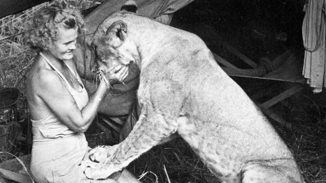 Elsa - Verliebt in eine Löwin
