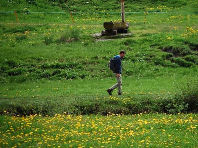 Nik wandert durch grüne Matten.