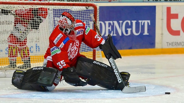 Eishockey-Torhüter im Goal, hinten Bandenwerbung Haldengut