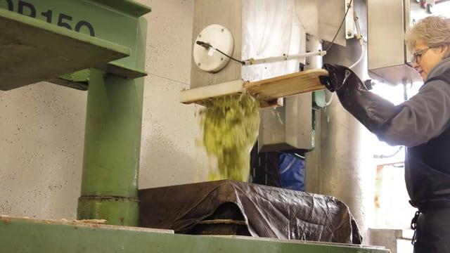Eine Maschine, aus der Apfelstücke rausfallen.
