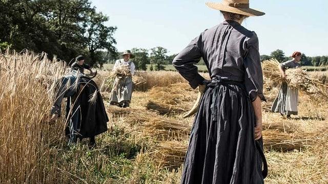 Frauen arbeiten auf dem Feld.