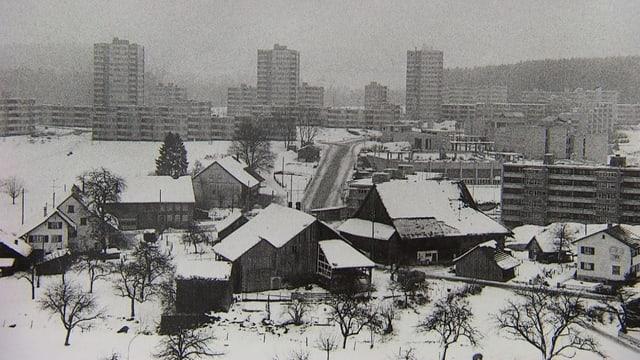 Alte Bauernhäuser vor Hochhäusern in Effretikon.
