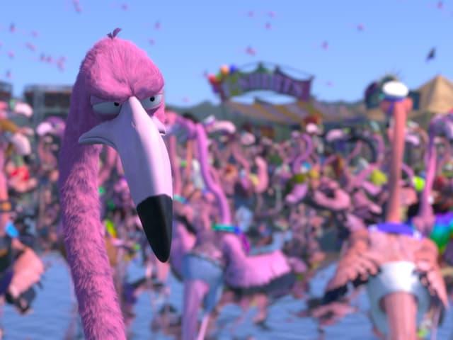 Der Kurzfilm «Flamingo Pride»: Was tut der einzig heterosexuelle Flamingo, um eine Störchin zu umwerben?