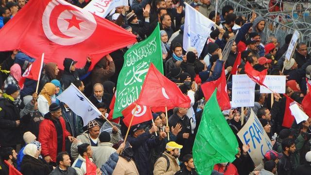 Pro-Regierung-Demonstranten schwenken Flaggen