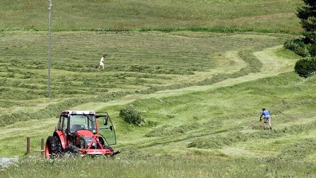 Bauern auf einem Grundstück am Heuen.