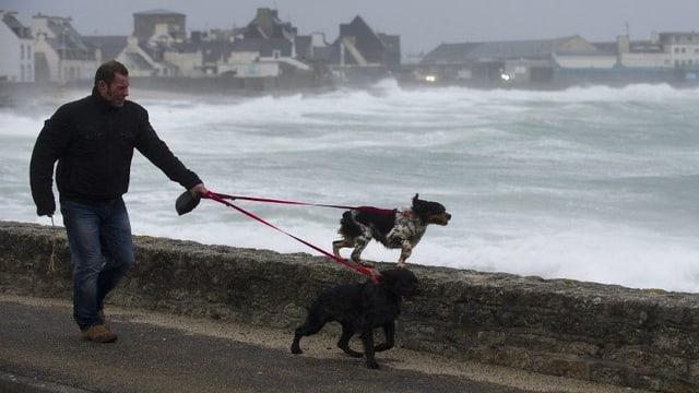 Spaziergänger mit Hunden am Strand in der Nähe von Brest.
