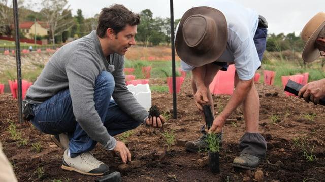 Sven Furrer hilft beim Anpflanzen kräftig mit.