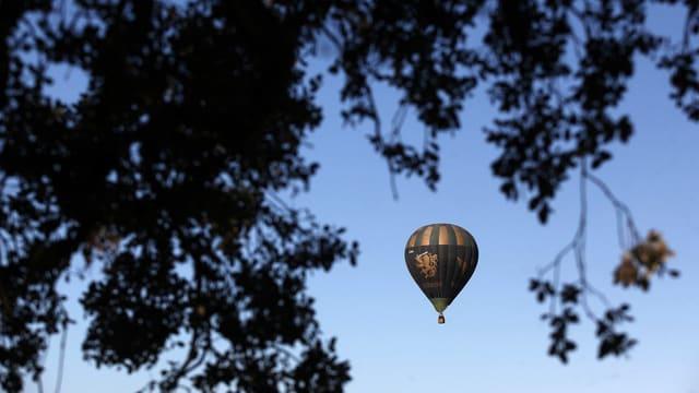 Man sieht einen Ballon durch eine Baumkrone