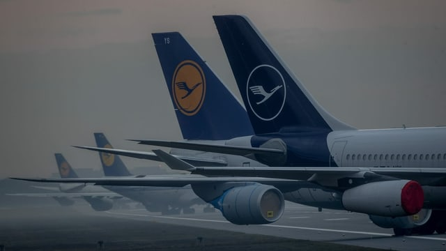 Lufthansa Flugzeuge am BodenDie Lufthansa leidet wie die gesamte Luftfahrt unter den Reisebeschränkungen in der Pandemie. Die Airline wurde mit einem milliardenschweren Rettungspaket des Bundes vor dem Aus bewahrt.