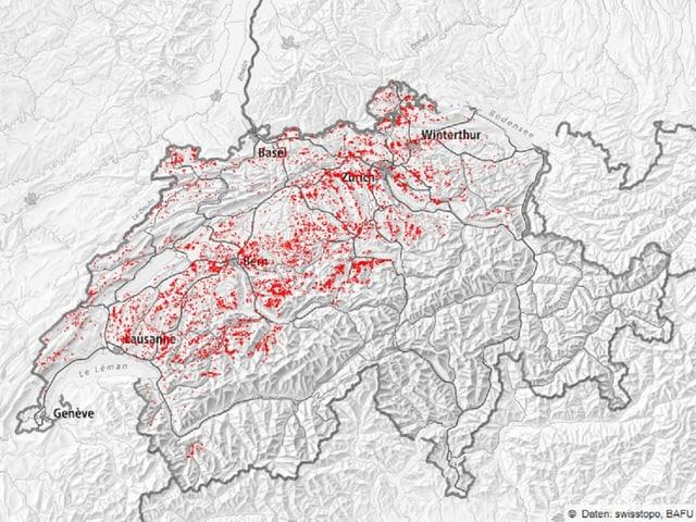 Eine Karte mit den Waldschäden.