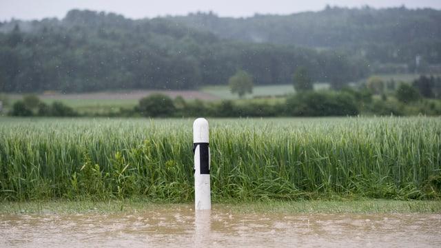 Via inundada ad Dottikon.