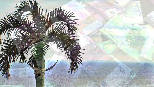 Überblendung von Palme und Geldnoten