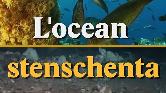 Laschar ir video «L'ocean stenschenta»