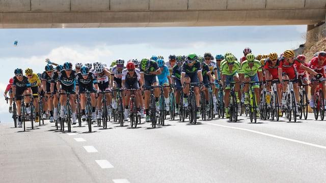 Ciclists al Tour de France