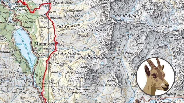 Kartenausschnitt mit Steinbock