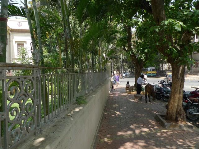Ein Bild des Parsenviertels Dadar.