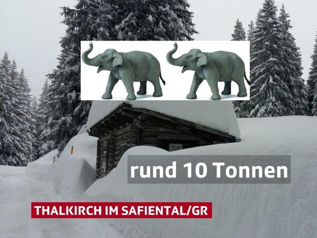 Viel Neuschnee, Mitten im Bild eine Hütte mit viel Schnee auf dem Dach. Dazu zwei Elefanten.