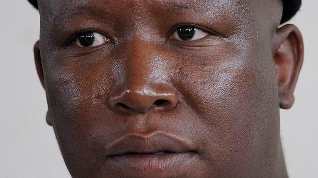 Purtret Julius Malema.