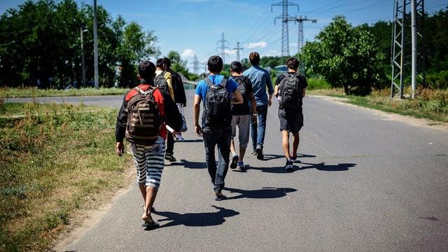 Eine Gruppe junger Männer mit Rucksäcken auf einer Landstrasse, weiter weg stehen Hochspannungsmasten.