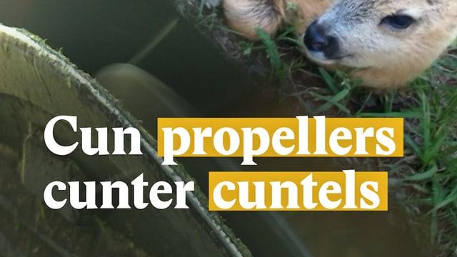 Laschar ir video «Cun propellers cunter cuntels»