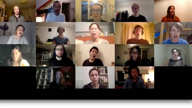 verschiedene Menschen während einer Videokonferenz