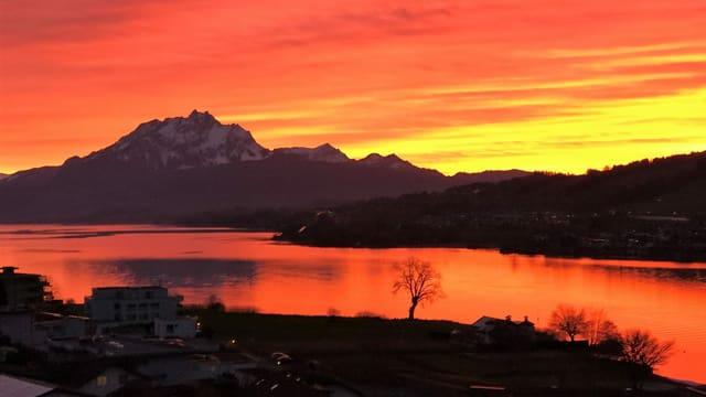 Blick von Küssnach an der Rigi über den orangen Vierwaldstättersee zum Pilatus und zum rot-goldenen Abendrot.