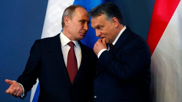 Putin und Orban.