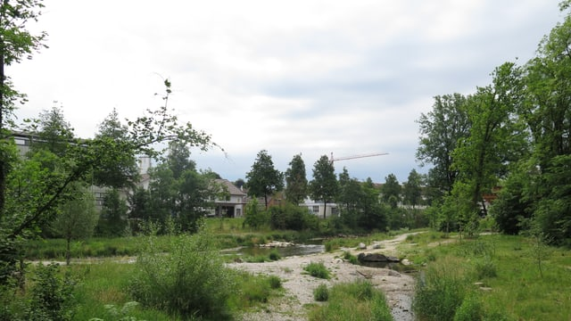 Murgauenpark