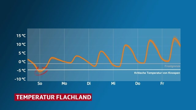 Temperaturverlauf im Flachland