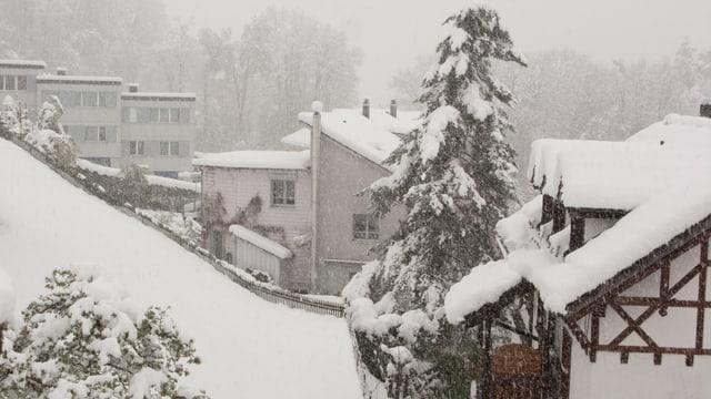 Verschneite Landschaft in St. Gallen
