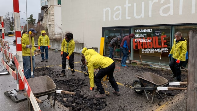 Mitarbeiterinnen und Mitarbeiter des Naturamas in Aarau entfernen den Teer mit Presslufthammer, Pickel und Schaufeln.