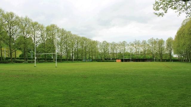 Die leere, von Bäumen gesäumte Pruntrutermatte in Basel mit zwei Rugby-Toren.