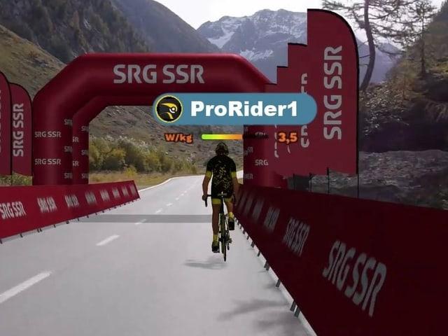 So sieht es aus, wenn zur virtuellen Tour de Suisse gestartet wird.