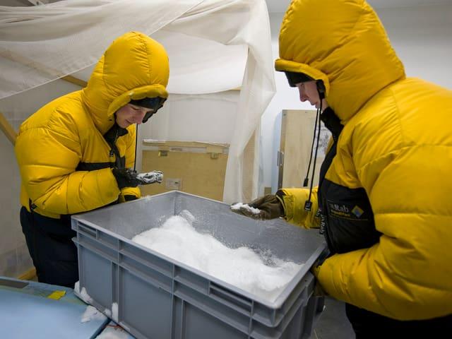 Zwei Mitarbeiter des SLF bäugen sich über eine graue Platikbox mit Schnee und nehmen eine Hand voll.