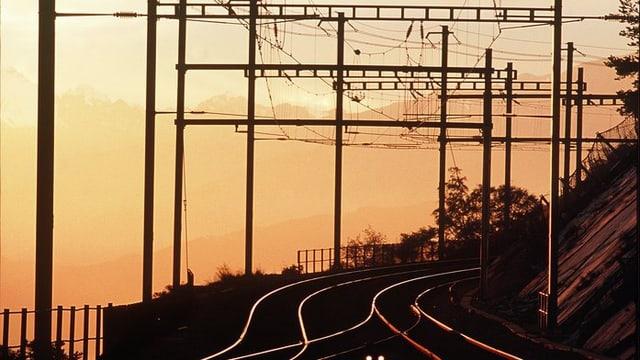 Geleise und Fahrleitungen in der Abendsonne.