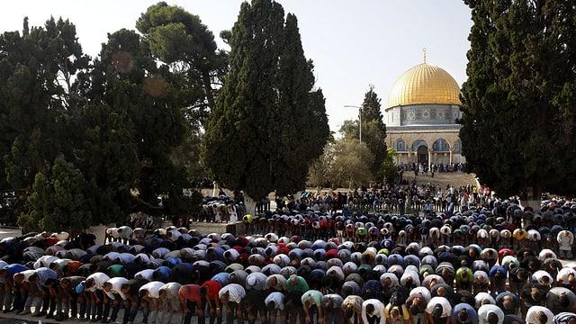 Persunas che fan oraziun avant la moschea sin il Munt dal Tempel