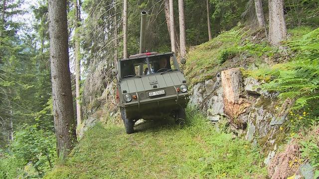 Cun in haflinger è vegnì transportà il material en la vischinanza da la fortezza.