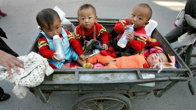 Vier chinesische Babys in einem Wagen