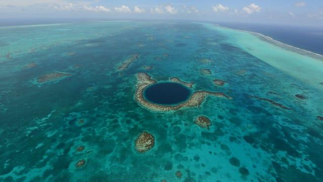 Das Belize-Korallenriff.