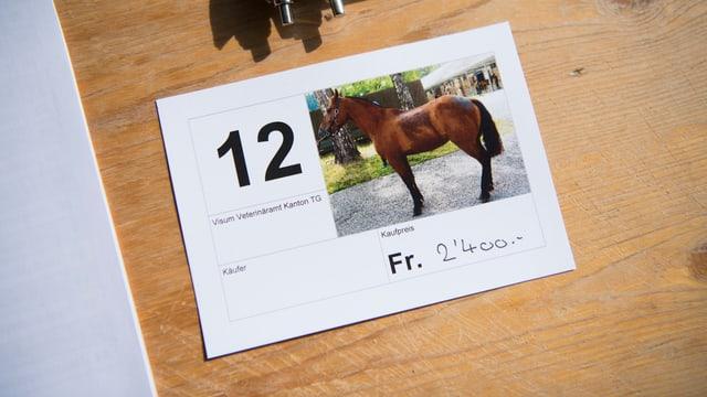 Preisschild und Pferd. Es kostet 2'400 Franken.