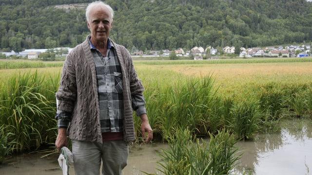 Mann mit Insektenfangnetz im Reisfeld.