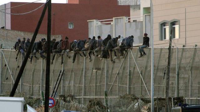 Migranten sitzen auf einem Grenzzaun