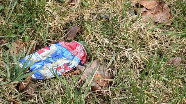 Eine Aludose liegt im Gras.
