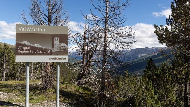 """Am Strassenrand ein Schild mit dem Schriftzug """"Val Müstair""""."""