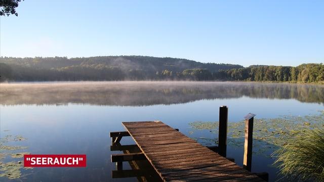 Nebelschwaden steigen aus dem See auf.